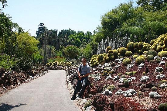 Йохан в стране кактусов :-)